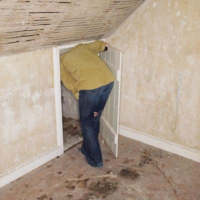 Attic Mold Removal, Mold Removal, Pennsylvania