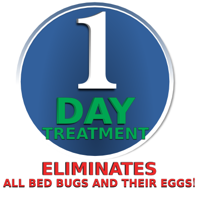 Bed Bug Heat Treatment